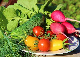 alimentos de verdade como ensina o 1 passo para o Estilo Paleo