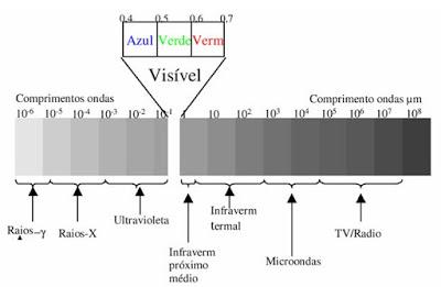 A propósito do micro-ondas… usar ou não usar?
